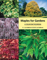 Maples for Gardens